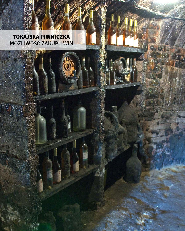 tokaj-degustacja-win-wycieczki-jednodniowa-wegry-2