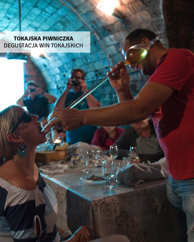 tokaj-degustacja-win-wycieczki-jednodniowa-wegry